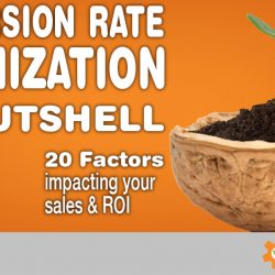 Conversion Rate Optimization - 20 Factors to Improve Your Sales and ROI